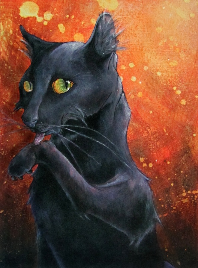 The Notorious Black Cat
